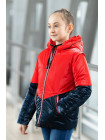 8924-2 Куртка БЛЭР демисезонная(красный/синий)